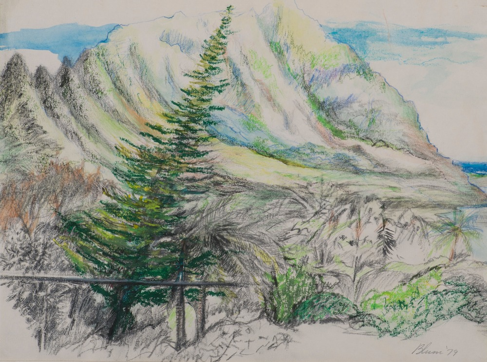 Mountain View At Kanaohe Hi Harlow Blum Art